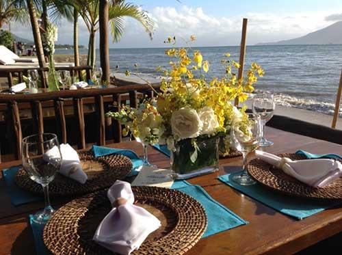 plantas na mesa