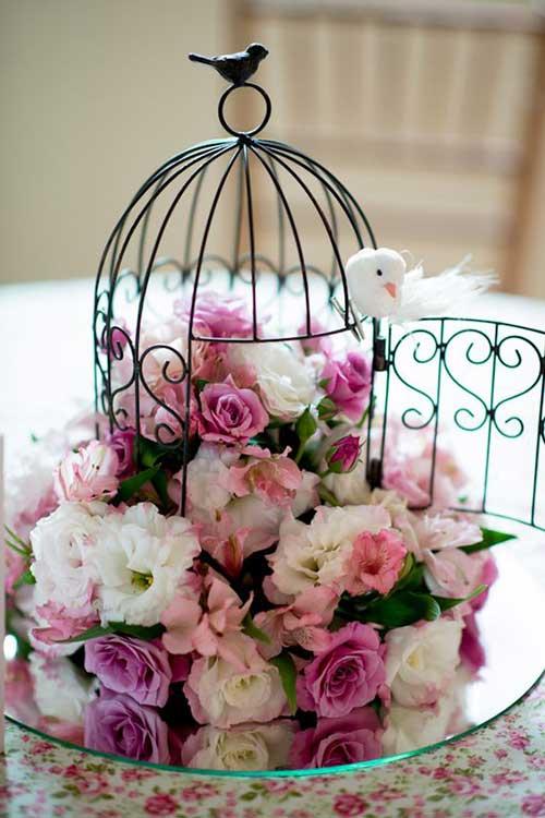 rosas, flores e dicas