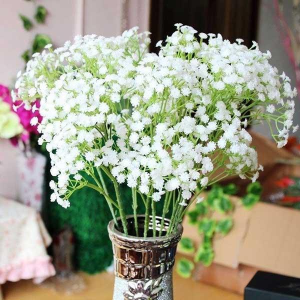 flor mosquitinho